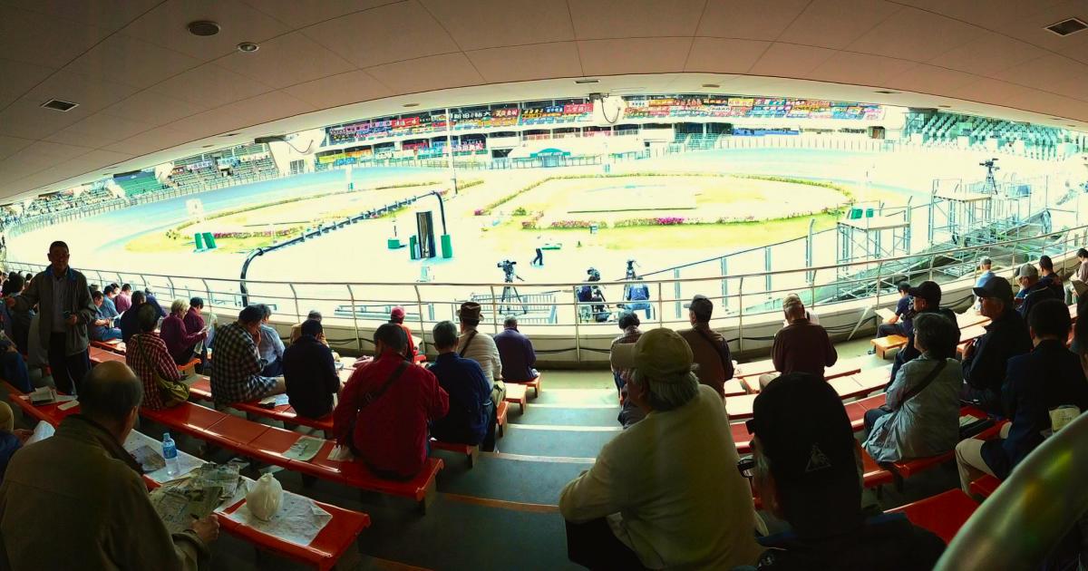 写真: 観覧席からみたレース場。手前の観覧席はわりと人で埋まっている
